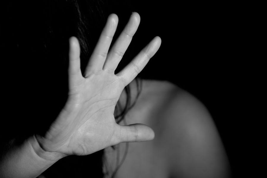 Domestic Violence Law